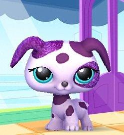 Dalmatien violet