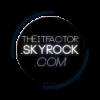 TheItFactor