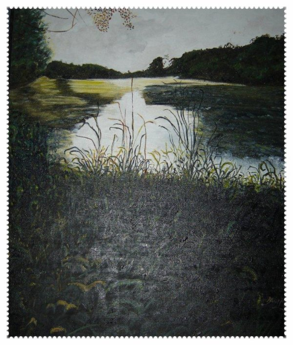 L'Etang de Vic sur Aisne dans l'Aisne