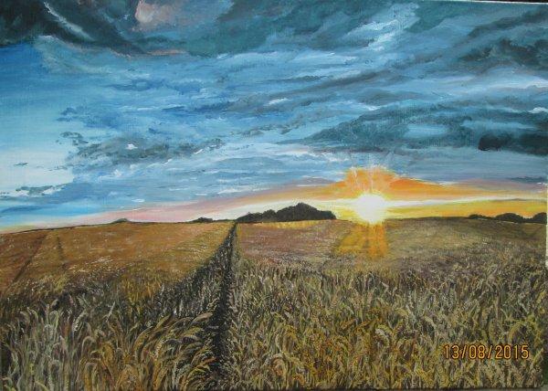 Coucher de soleil sous un champ de blé près de chez moi