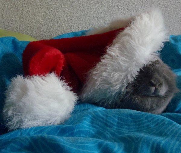Noel les enfants !