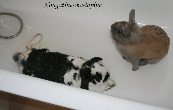 Chipette & Clotilde !
