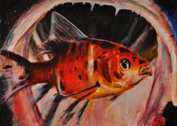 Manger ou etre mangé .. .peinture à l huile ft 32 /24 cm