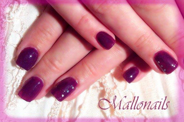 Annlore purple