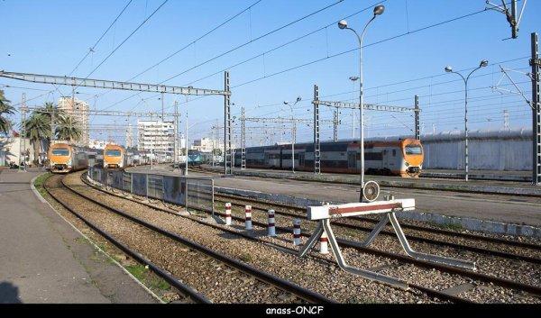 Z2M-106 ; Z2M-123 ; ZM 06 ; Z2M-108 à Casa Port