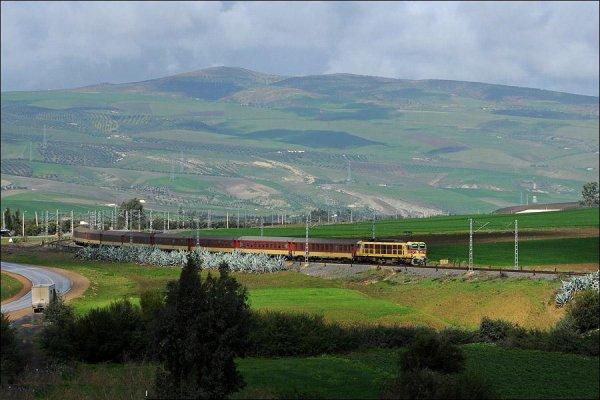 E-1256 A L'Entrée de Sidi Kacem