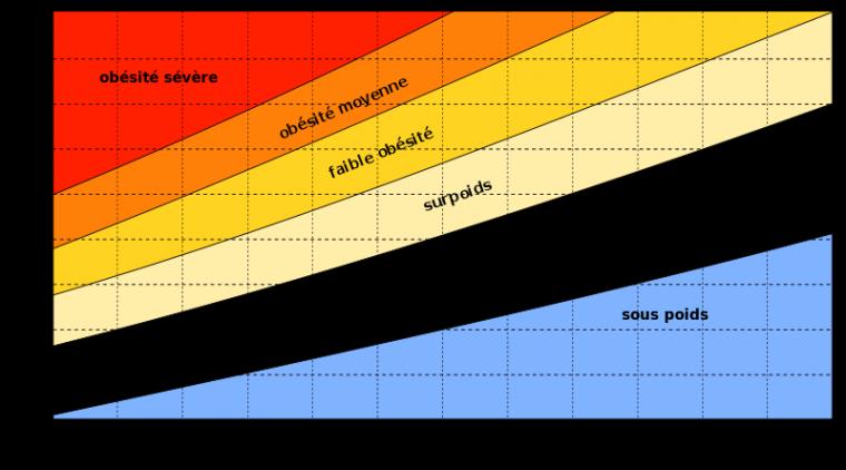I.M.C (Indice de Masse Corporelle)