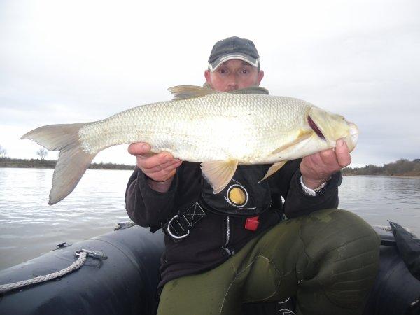 en loire un peu de poisson malgré le froid
