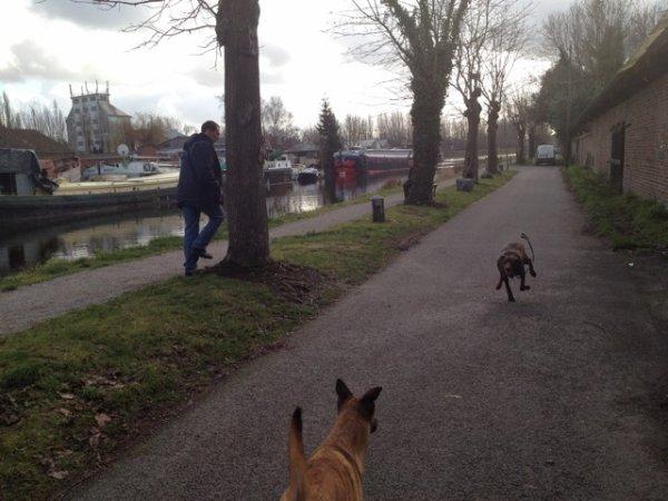 michael et son chien,  leçon extérieur.