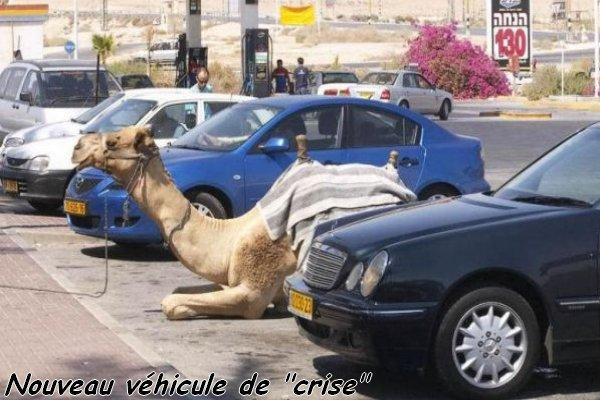 Nouveau véhicule de crise