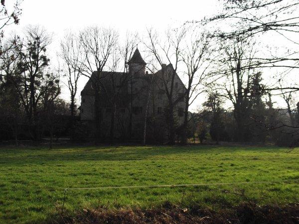 Images du Haut-Rhin : Le château de Hartmannswiller !...