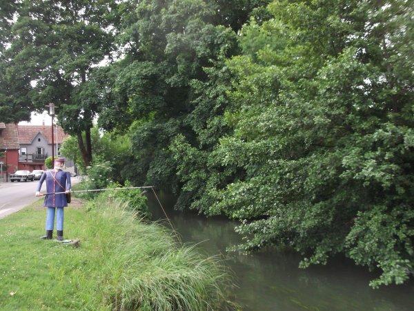 """Images du Haut-Rhin : Le """" pêcheur immobile """" d'Ensisheim !..."""