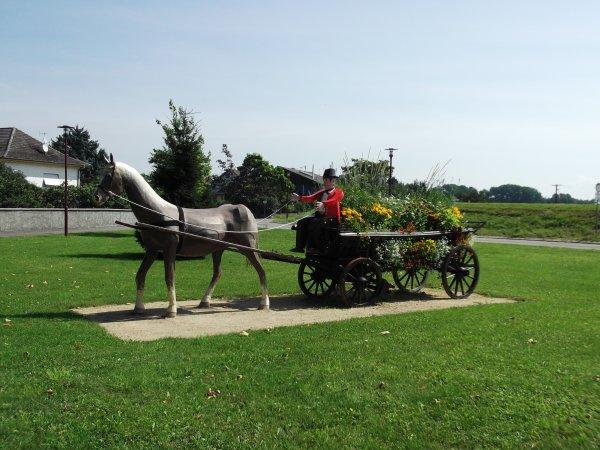 Images du Haut-Rhin : Le cocher et le cheval attelé à une charrette d'Ensisheim !...