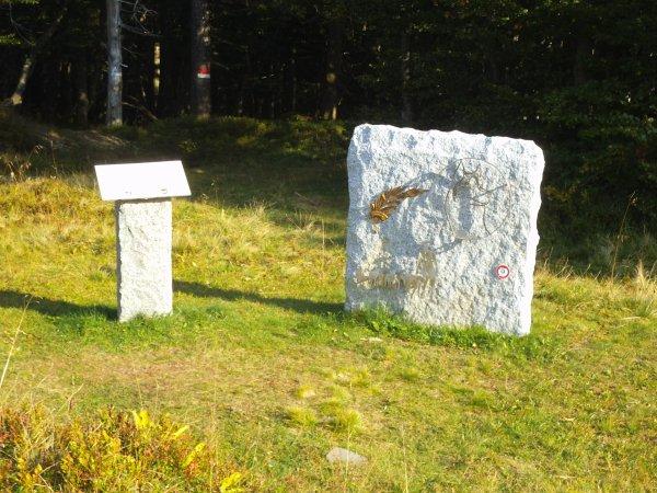 Images du Haut-Rhin : La stèle en souvenir des 1 ère et 2 ème sections d'équipages canins d'Alaska, non loin du Breitfirst !...