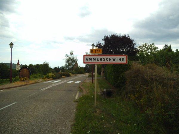 10 ème Grimpée du Waldbach, Ammerschwihr - Labaroche (FSGT) !...