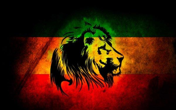 drapeau avec lion vert jaune rouge