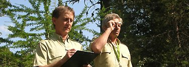 L' Office National des Forêts  ( O N F )