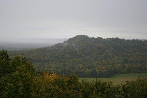 Idées promenades, la Forêt d'Argonne,