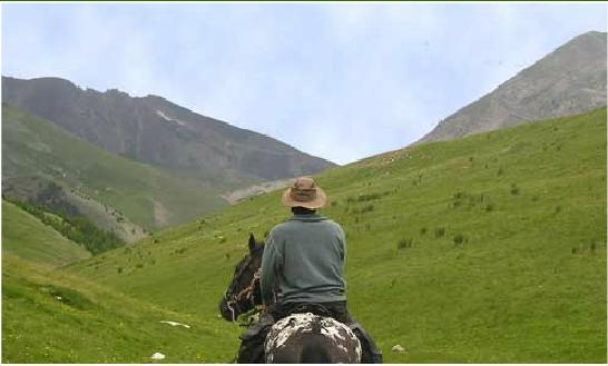 Balade dans les Alpes de Haute-Provence