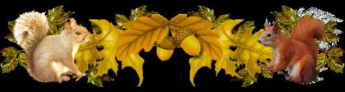 L'entretien de arbres fruitiers