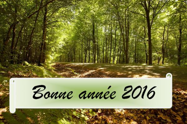 A tous, je vous souhaite une très bonne année 2016