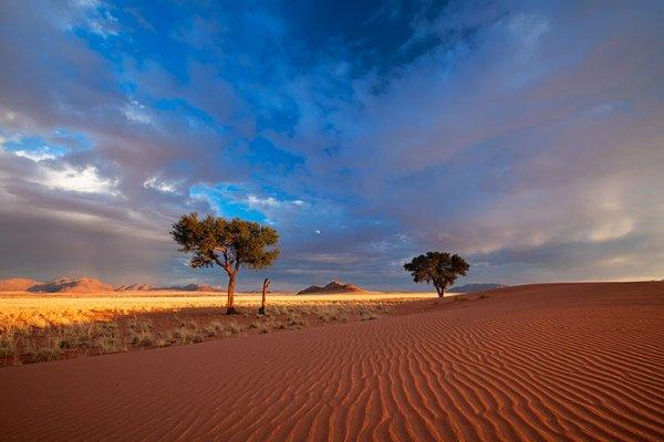 Ce magnifique désert de Namibie