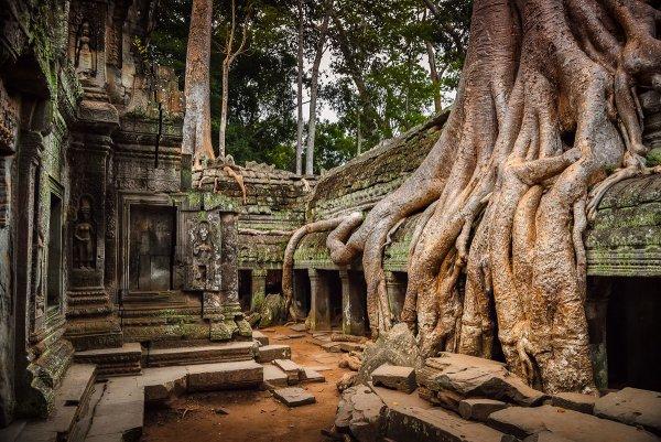 6 endroits où la nature a gagné sa bataille contre la civilisation