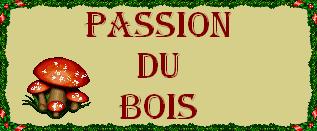 La châtaigneraie de Pianellu (Corse)