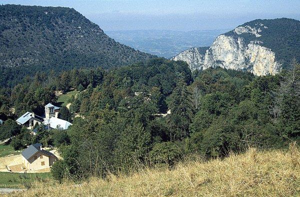 Forêt du Vercors
