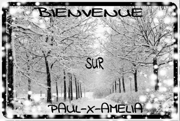 BIENVENUE SUR PAUL-X-AMELIA