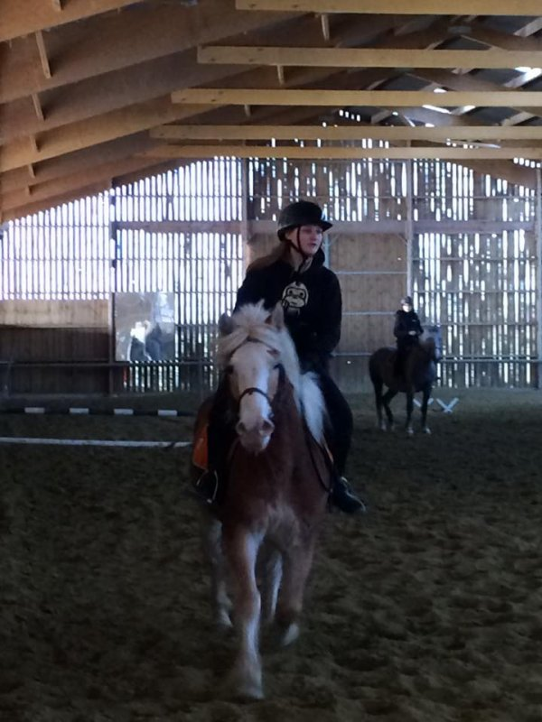 )(l)(l)(l) Aprés midi Equitation  )(l)(l)(l)