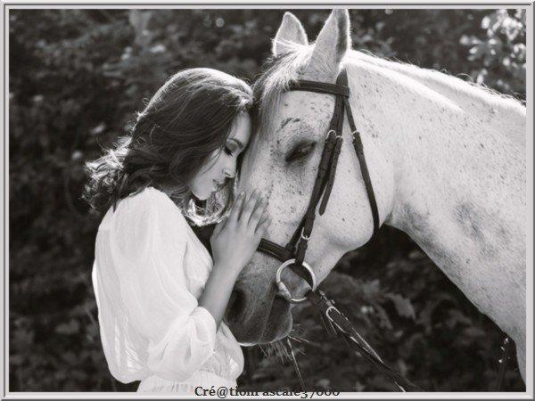 (l)(l)(l) Pour l'amour des chevaux  (l)(l)(l)
