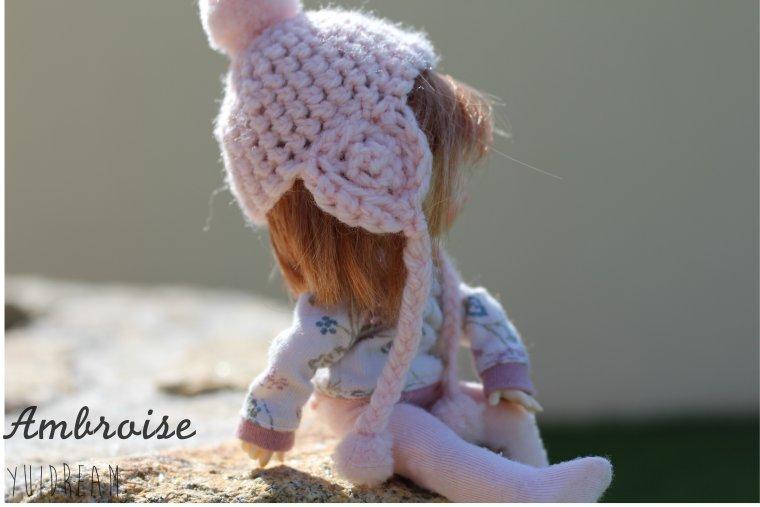 Un monde miniature , Ambroise !
