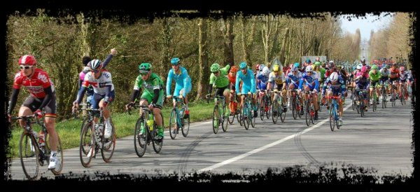 Gand Wevelgem (suite photos)