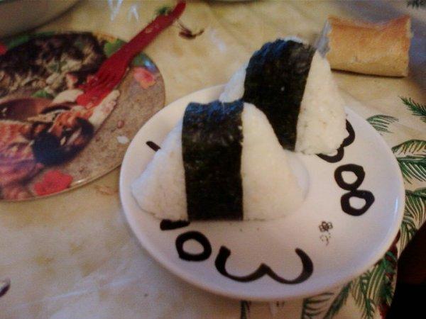 Retour après deux ans eh ouais (onigiri pourri by moi xD) (blog en correction ^^)