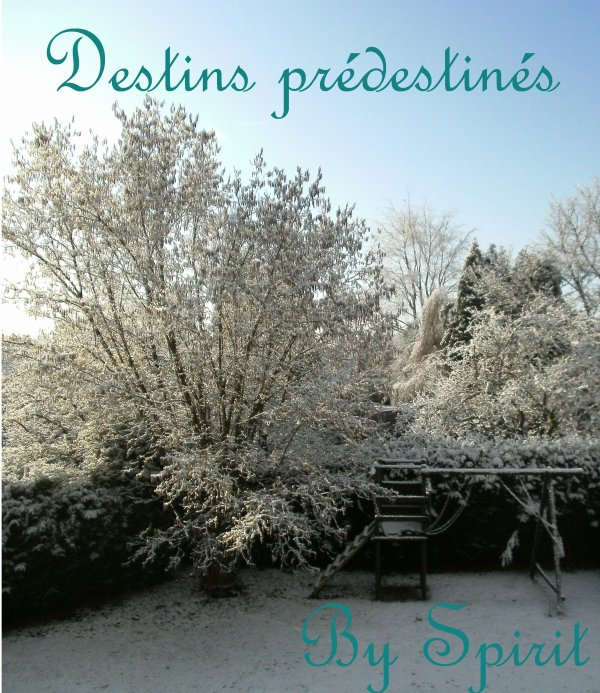 Destins prédestinés: new book