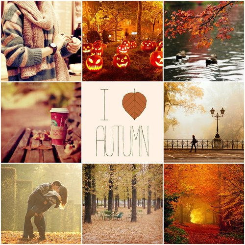 Inspirations : #Autumn
