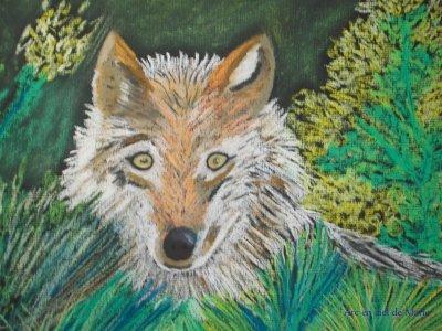 Pastels sec   loups du gévaudan
