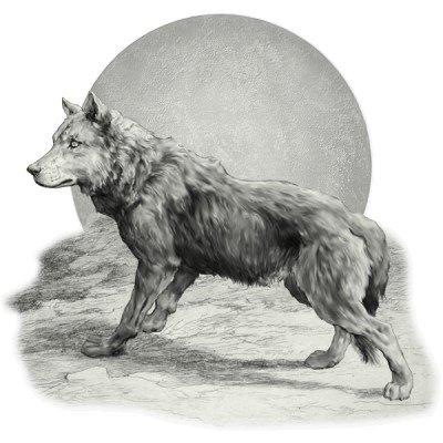 Poème,fais maison ;) pour le loup