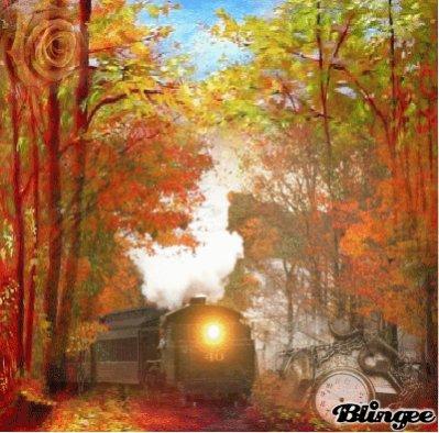 le train n°40