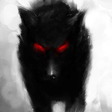 Plein Ciel : Les Black shuck