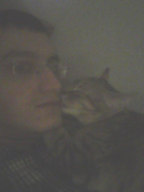 Igor (un de mes 4 chats) le plus câlin