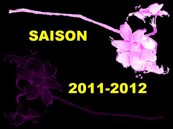 NOS SORTIS 2011-2012