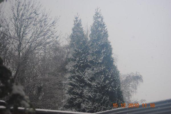 mercredi 15 décembre 2010 11:18