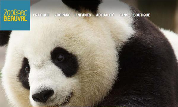 ZooParc de Beauval : les tickets d'entrée sont proposés à prix moindre
