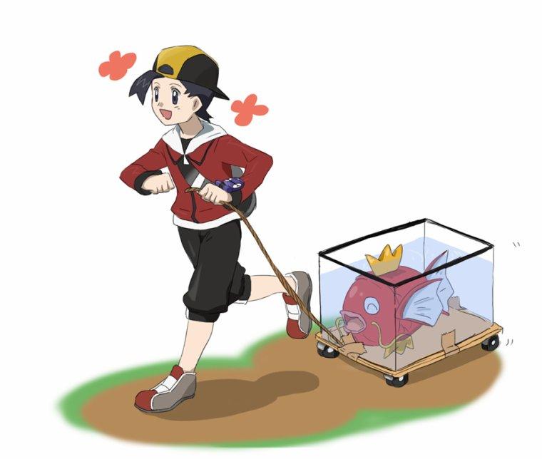 Pension Pokemon