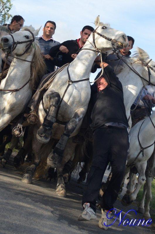 Saint Nazaire de Pezan, Bandide le 29/04/12