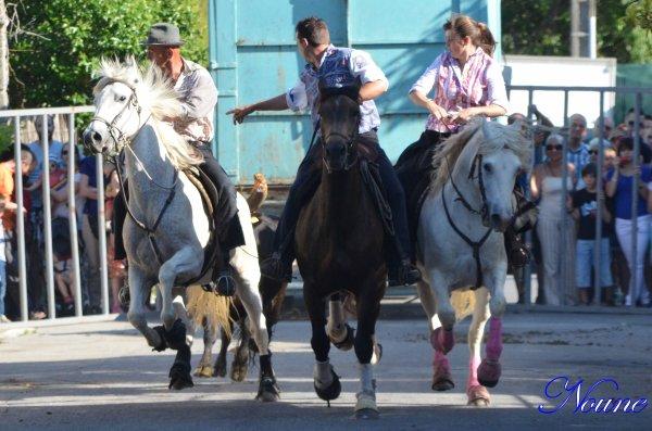 Saussine; Concours d'attrappaires le 26/05/12