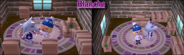 15 Decembre c'étais mon anniv' ! ♥ // Nouvelle habitante, Blanche !