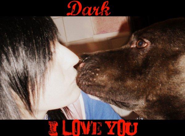 Dark ~ ♥